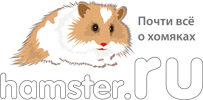 HAMSTER.RU