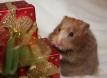 Всех с Новым годом и много, много коробок с подарочками!