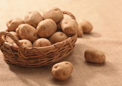 Картофель в меню вашего хомяка (за и против)